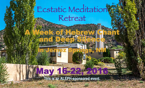 Ecstatic Meditation Retreat